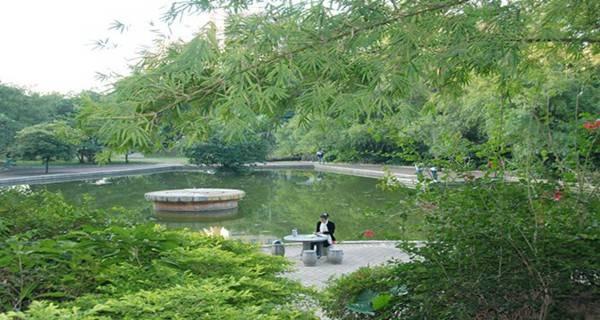 广州番禺职业技术学院 公园