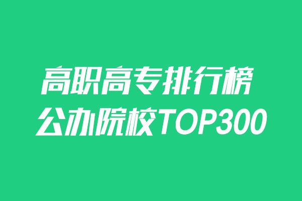 2019高职高专院校排行榜—公办院校TOP300