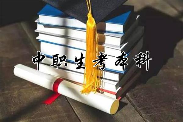 3+证书考本科 附2019年录取情况