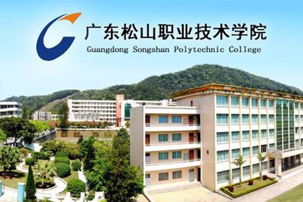 2020年广东松山职业技术学院高职高考(3+证书)招生计划